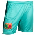 Portugal football pants green 2018